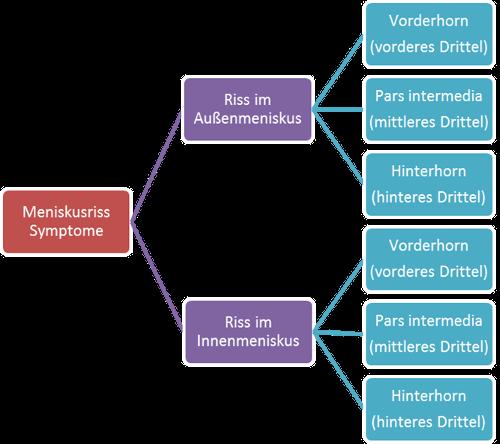 Meniskus Symptome - Außenanriss oder Innenanriss