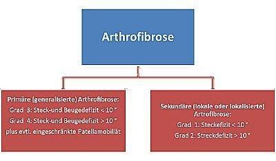 Zyklops und Arthrofibrose