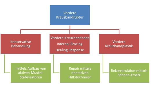 Konservative Behandlung vs. Internal Bracing vs. Kreuzbandplastik