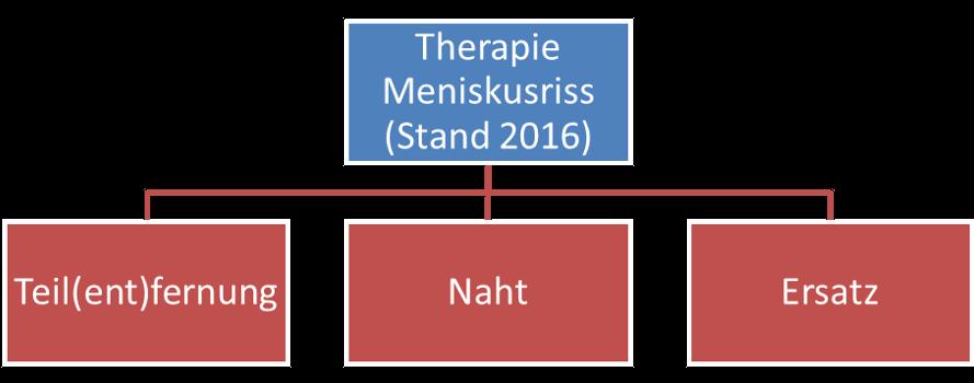 Therapie Meniskusriss